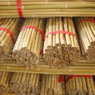 Bambu Destek Çubukları