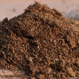 Peat Moss For Pot and Bedding Plants