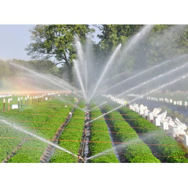 Sprinklers Products
